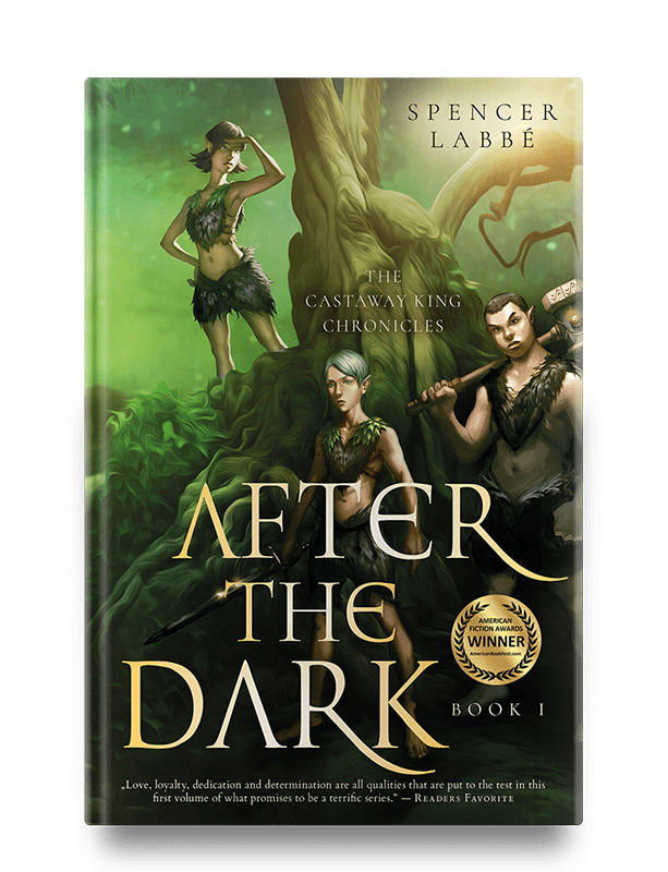 after-the-dark-book-cover-design